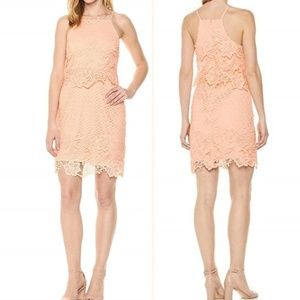 🆕 BB Dakota Bodycon Lace Dress - 4